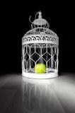 Apple σε ένα κλουβί Στοκ εικόνες με δικαίωμα ελεύθερης χρήσης