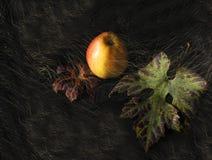 Apple σε ένα μαύρο φθινόπωρο Στοκ Φωτογραφία