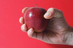 Apple σε ετοιμότητα Στοκ εικόνες με δικαίωμα ελεύθερης χρήσης