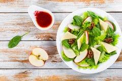 Apple, σπανάκι, φέτες τυριών, μαρούλι, ξύλα καρυδιάς, σαλάτα των βακκίνιων Στοκ Εικόνες