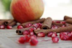 Apple, σπόροι ροδιών και κανέλα Στοκ φωτογραφίες με δικαίωμα ελεύθερης χρήσης