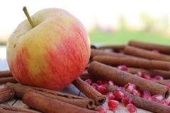 Apple, σπόροι ροδιών και κανέλα Στοκ εικόνες με δικαίωμα ελεύθερης χρήσης