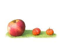 Apple στα πράσινα φύλλα Στοκ Εικόνες