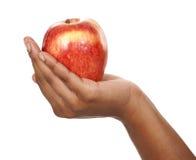 Apple στα χέρια Στοκ Εικόνες
