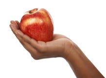 Apple στα χέρια Στοκ εικόνα με δικαίωμα ελεύθερης χρήσης