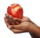 Apple στα χέρια Στοκ Φωτογραφία