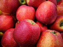 Apple στην αγορά της Farmer ` s Στοκ Εικόνα