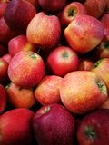 Apple στην αγορά της Farmer ` s Στοκ Φωτογραφίες