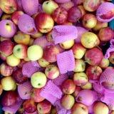 Apple στην αγορά Στοκ εικόνες με δικαίωμα ελεύθερης χρήσης
