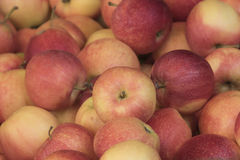 Apple στην αγορά Στοκ φωτογραφία με δικαίωμα ελεύθερης χρήσης