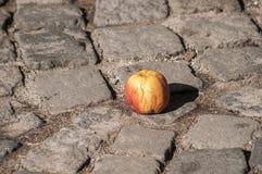 Apple στην επίστρωση πετρών grunge Στοκ φωτογραφίες με δικαίωμα ελεύθερης χρήσης