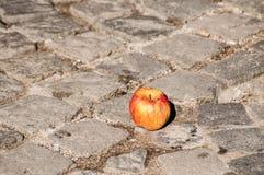 Apple στην επίστρωση πετρών grunge Στοκ Φωτογραφίες
