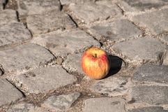 Apple στην επίστρωση πετρών grunge Στοκ εικόνα με δικαίωμα ελεύθερης χρήσης