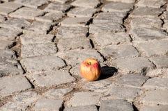 Apple στην επίστρωση πετρών grunge Στοκ Εικόνες
