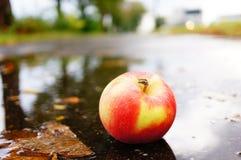 Apple στη λακκούβα Στοκ Φωτογραφία