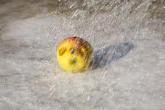 Apple στη βροχή Στοκ εικόνα με δικαίωμα ελεύθερης χρήσης