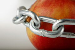 Apple στις αλυσίδες Στοκ Φωτογραφίες