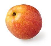Apple στις πτώσεις σε ένα άσπρο υπόβαθρο Στοκ Φωτογραφίες