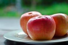 Apple στο άσπρο πιάτο Στοκ εικόνα με δικαίωμα ελεύθερης χρήσης