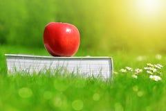 Apple στο βιβλίο στη χλόη Στοκ εικόνα με δικαίωμα ελεύθερης χρήσης