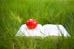 Apple στο βιβλίο Στοκ Εικόνες