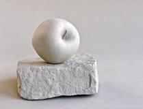 Apple στο βράχο Στοκ Φωτογραφία