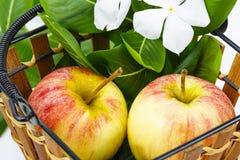 Apple στο καλάθι και το άσπρο λουλούδι, πράσινο φύλλο Στοκ Φωτογραφίες