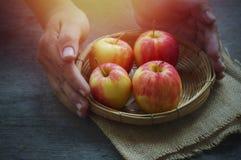 Apple στο καλάθι και το χέρι Στοκ Φωτογραφία