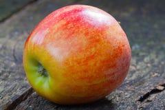 Apple στο ξύλο Στοκ εικόνες με δικαίωμα ελεύθερης χρήσης