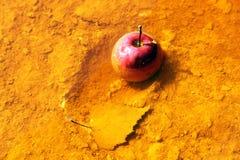 Apple στο τοξικό νερό Στοκ εικόνες με δικαίωμα ελεύθερης χρήσης