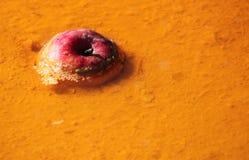 Apple στο τοξικό νερό Στοκ Φωτογραφίες