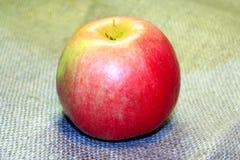 Apple στο υπόβαθρο απόλυσης Στοκ Εικόνες