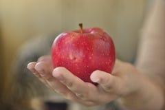 Apple στο φοίνικα Στοκ Φωτογραφίες