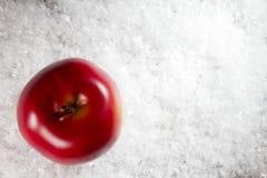 Apple στο χιόνι Στοκ φωτογραφίες με δικαίωμα ελεύθερης χρήσης