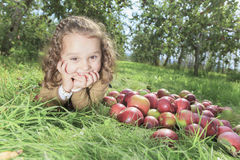 Apple στο όμορφο φθινόπωρο Στοκ Εικόνα