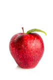 Apple το φύλλο που απομονώνεται με Στοκ εικόνα με δικαίωμα ελεύθερης χρήσης