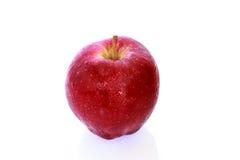 Apple το φύλλο που απομονώνεται με Στοκ Φωτογραφίες