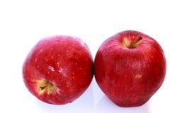 Apple το φύλλο που απομονώνεται με Στοκ φωτογραφία με δικαίωμα ελεύθερης χρήσης