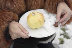 Apple το χειμώνα Στοκ Εικόνες