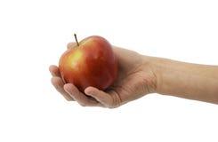 Apple υπό εξέταση Στοκ φωτογραφία με δικαίωμα ελεύθερης χρήσης