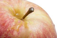 Apple φρέσκια που απομονώνει στο άσπρο υπόβαθρο Στοκ φωτογραφία με δικαίωμα ελεύθερης χρήσης