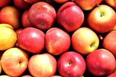 Apple, φρούτα, τρόφιμα, οργανικά Στοκ Φωτογραφίες