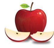 Apple, иллюстрация Стоковые Фотографии RF