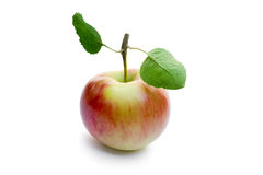 Apple. One red apple isolated on white background Royalty Free Stock Photos
