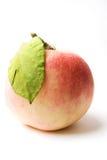 Apple Imagem de Stock