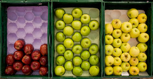 Apple. Green, red and yellow apples Royalty Free Stock Photography