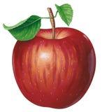 Apple libre illustration