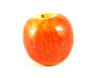 Apple. Stock Photo