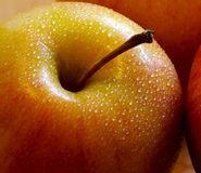 Apple. A warm and rich image of a single apple with dew droplets adding a sense of crisp freshness Royalty Free Stock Image