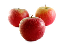 Apple. Photo of isolated fresh red apples Stock Image